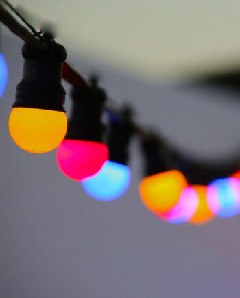 NEW Firefly LED Lighting Festoon Harness ES E27 Holders - 24V 1.5m Lamp Holder Spacing - Black per meter